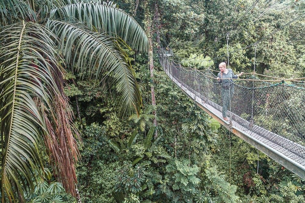canopy walkway atta lodge guyana rainforest
