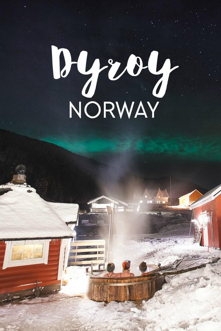 If you want to take a northern lights holiday in norway, go to Dyrøy where you can watch the aurora, go husky sledding, and sit in an aurora hot tub