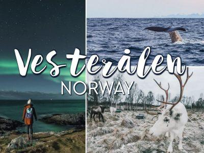 7 Reasons To Add Vesterålen to Your Northern Norway Itinerary