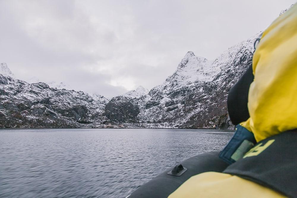 RIB boat norway lofoten safari