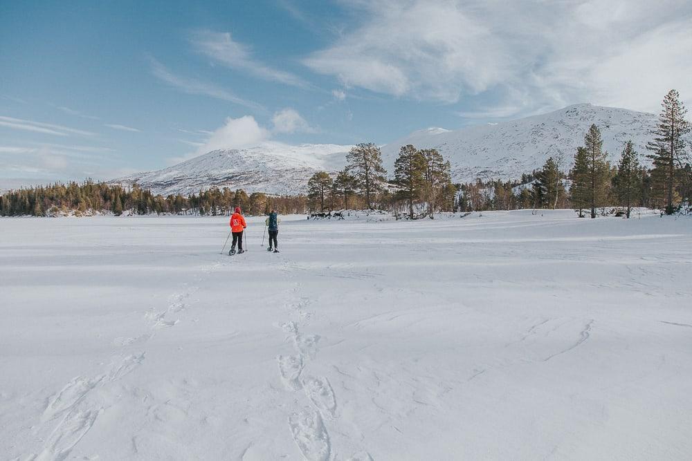 snowshoeing sæterstad farm hattfjelldal