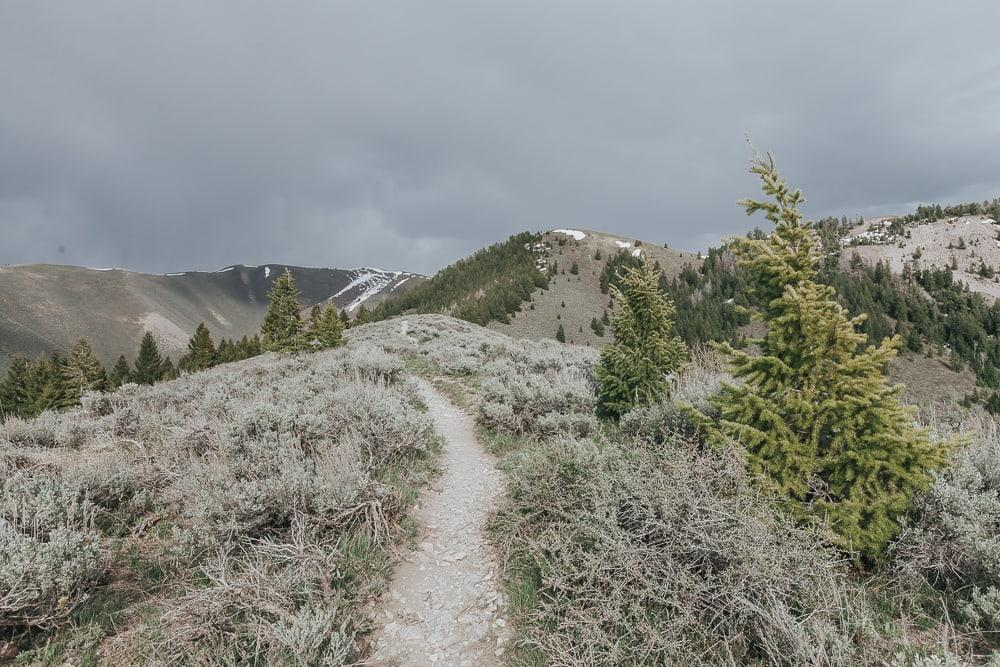 Proctor Mountain loop hikes Ketchum idaho