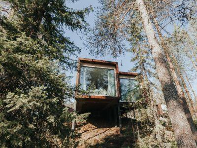 arctic treehouse hotel rovaniemi finland in summer