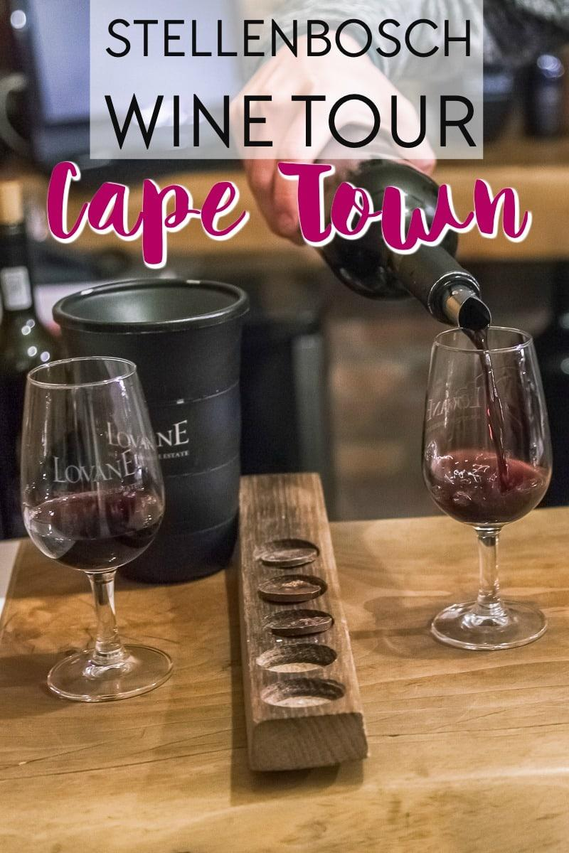 wine flies stellenbosch wine tasting tour from cape town south africa