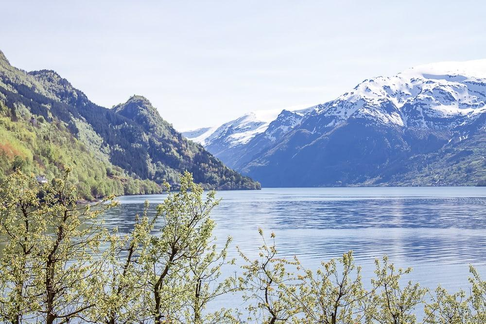 hardangerfjord in bloom norway in may