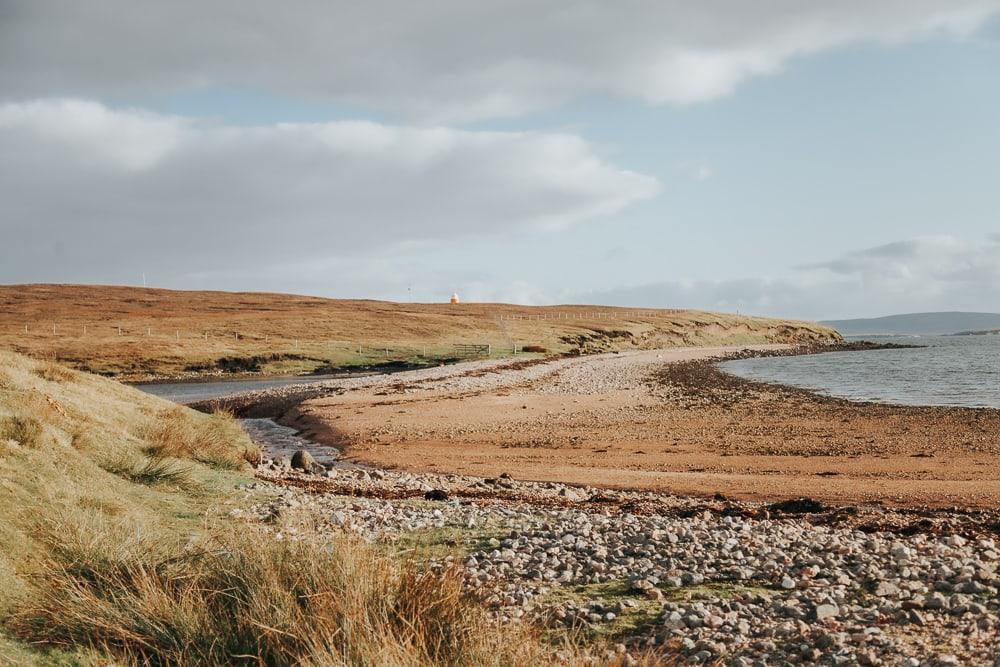 shetland photo tours balade en faune
