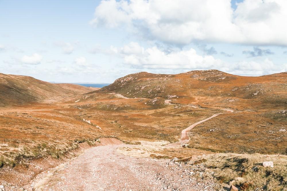 jambon dans muckle roe shetland promenade côtière