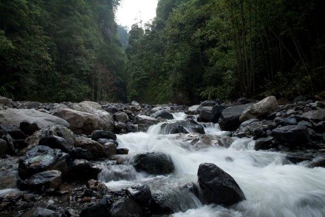 Heart of Borneo Expeditions