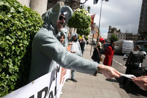 A protester in London. Photo courtesy of Forest Heroes
