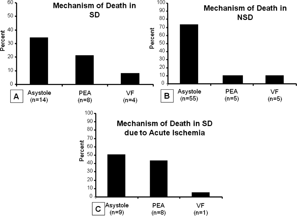Mode and mechanisms of death after orthotopic heart