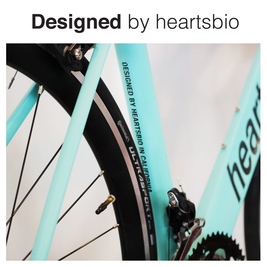 heartsbio heartsbike model H main