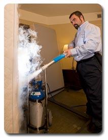 Bed Bugs Freeze Treatments | Hearts Pest Management