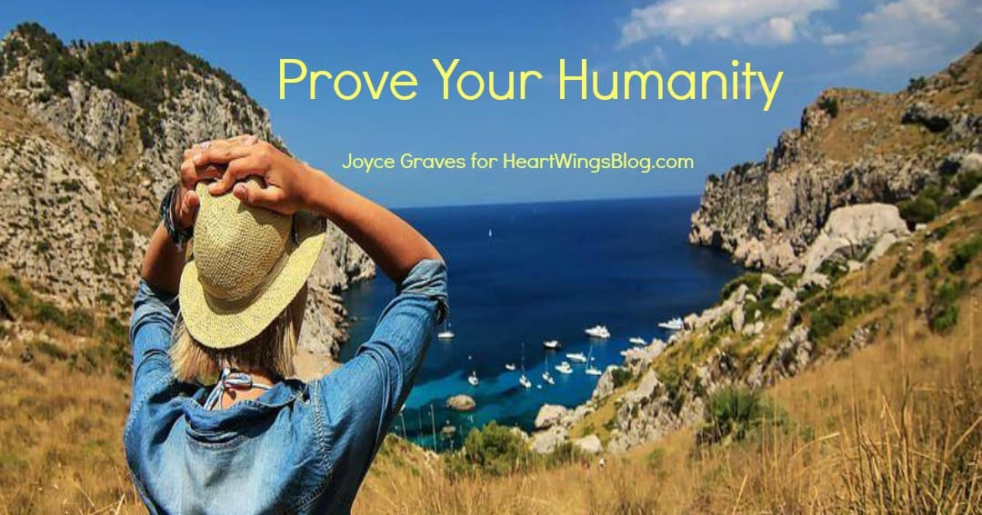 Prove Your Humanity