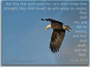 They that wait upon the Lord...Isaiah 40:31
