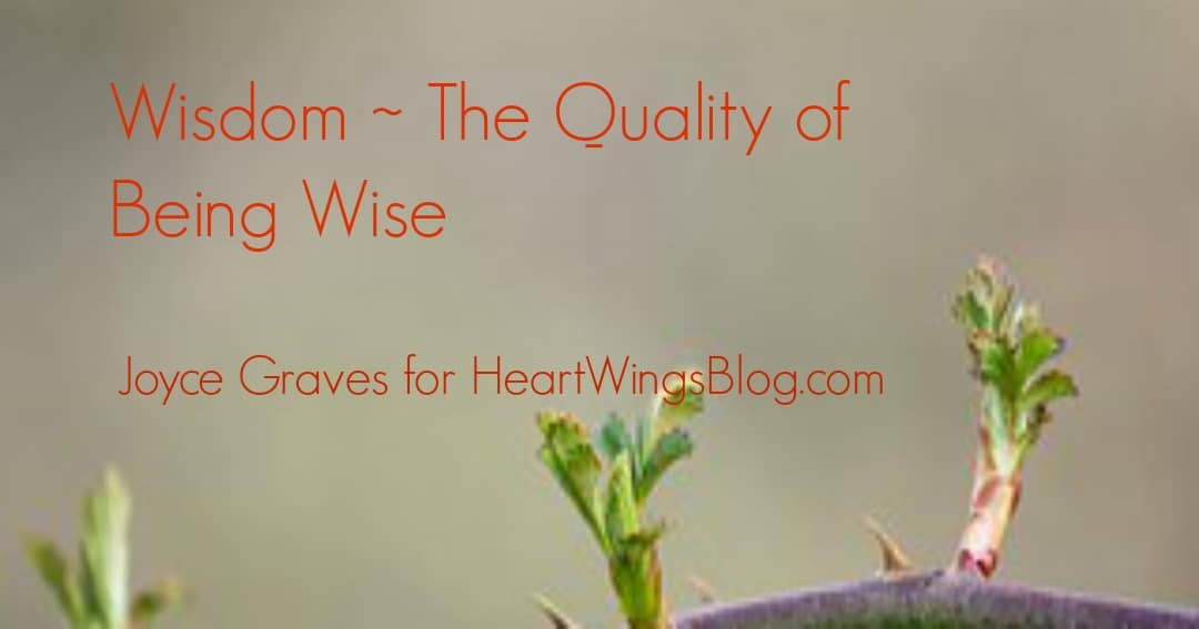 Wisdom ~ The Quality of Being Wise