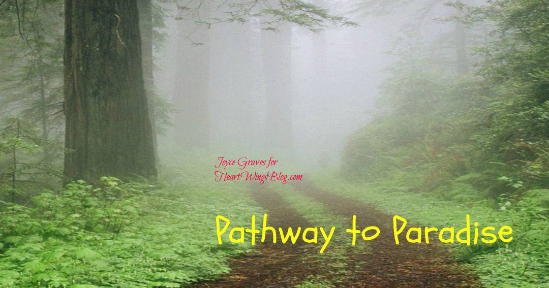 Pathway to Paradise