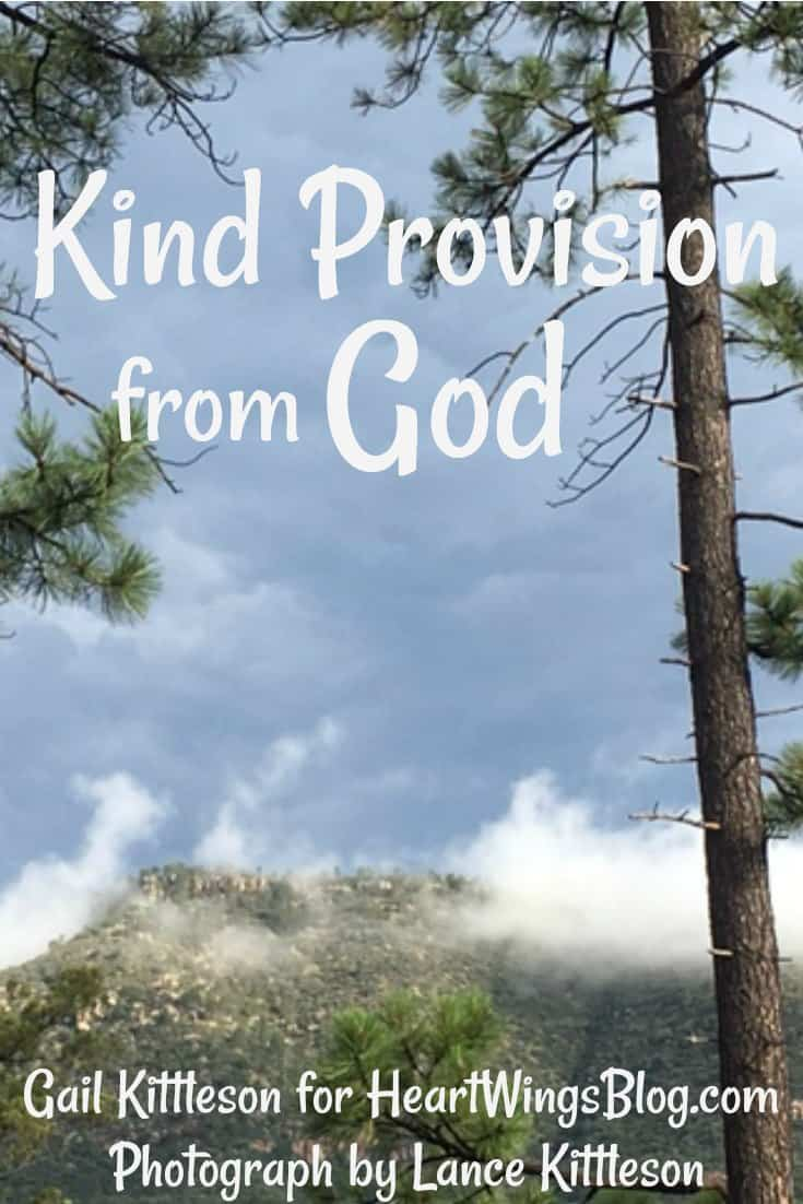 Gail Kittleson share of a Kind Provision from God at HeartWingsBlog.com