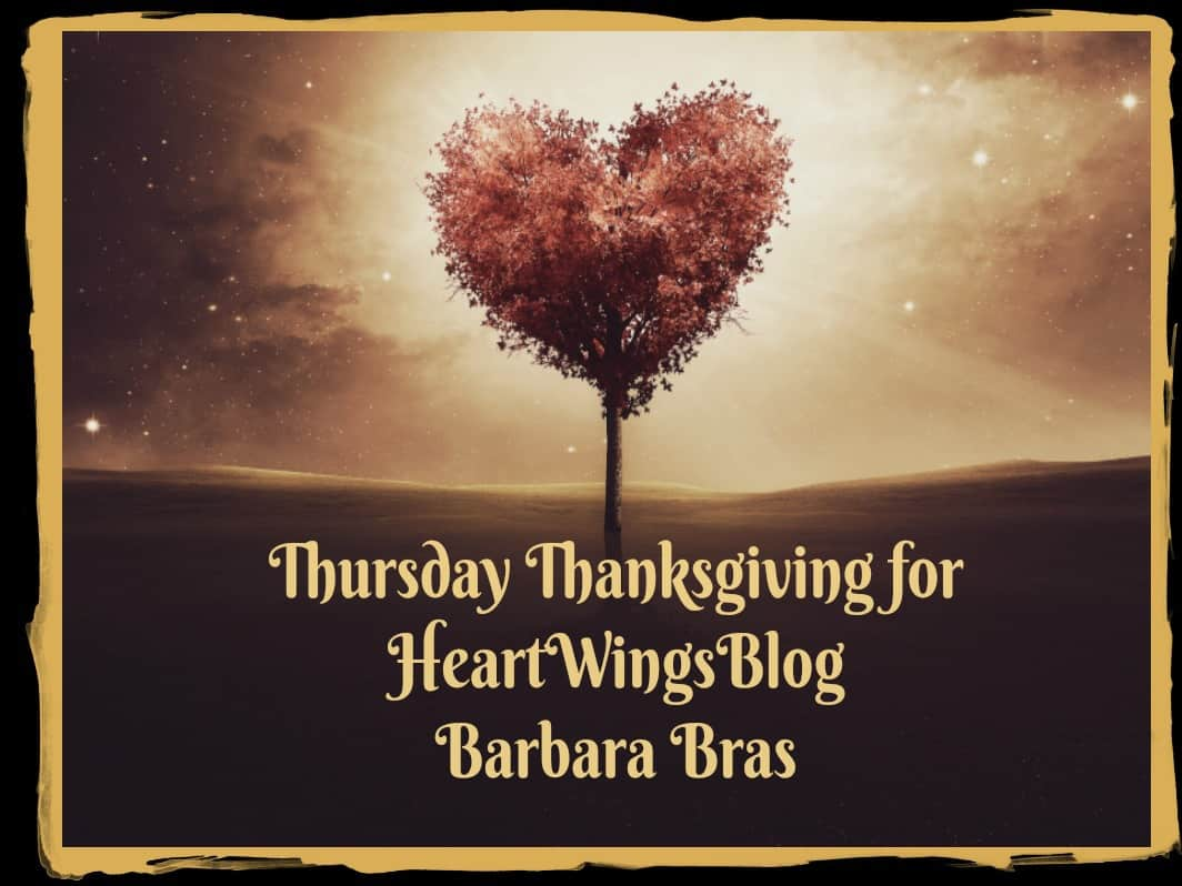 Barbara Bras is Thankful at HeartWings Blog
