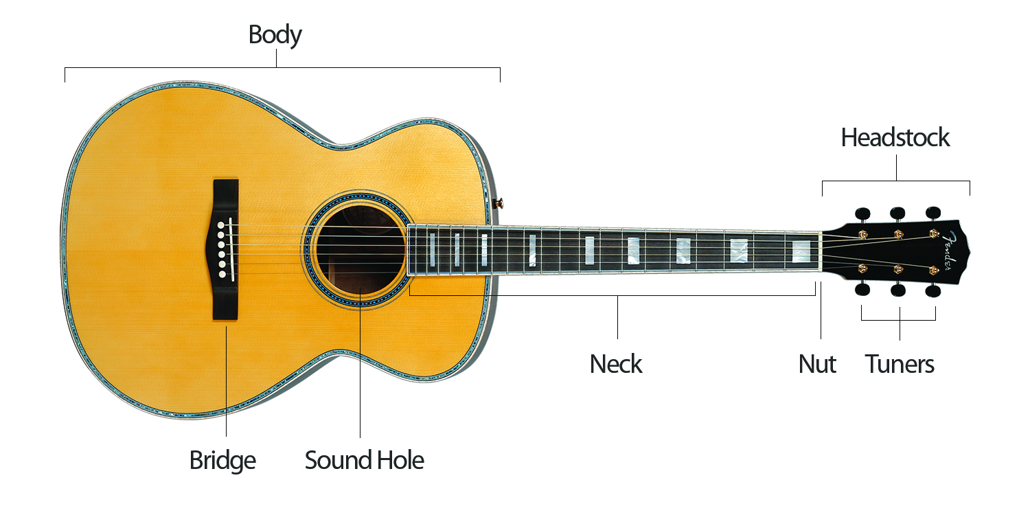 guitar parts diagram yamaha warrior 350 stator wiring basic free for you of a heartwood classical