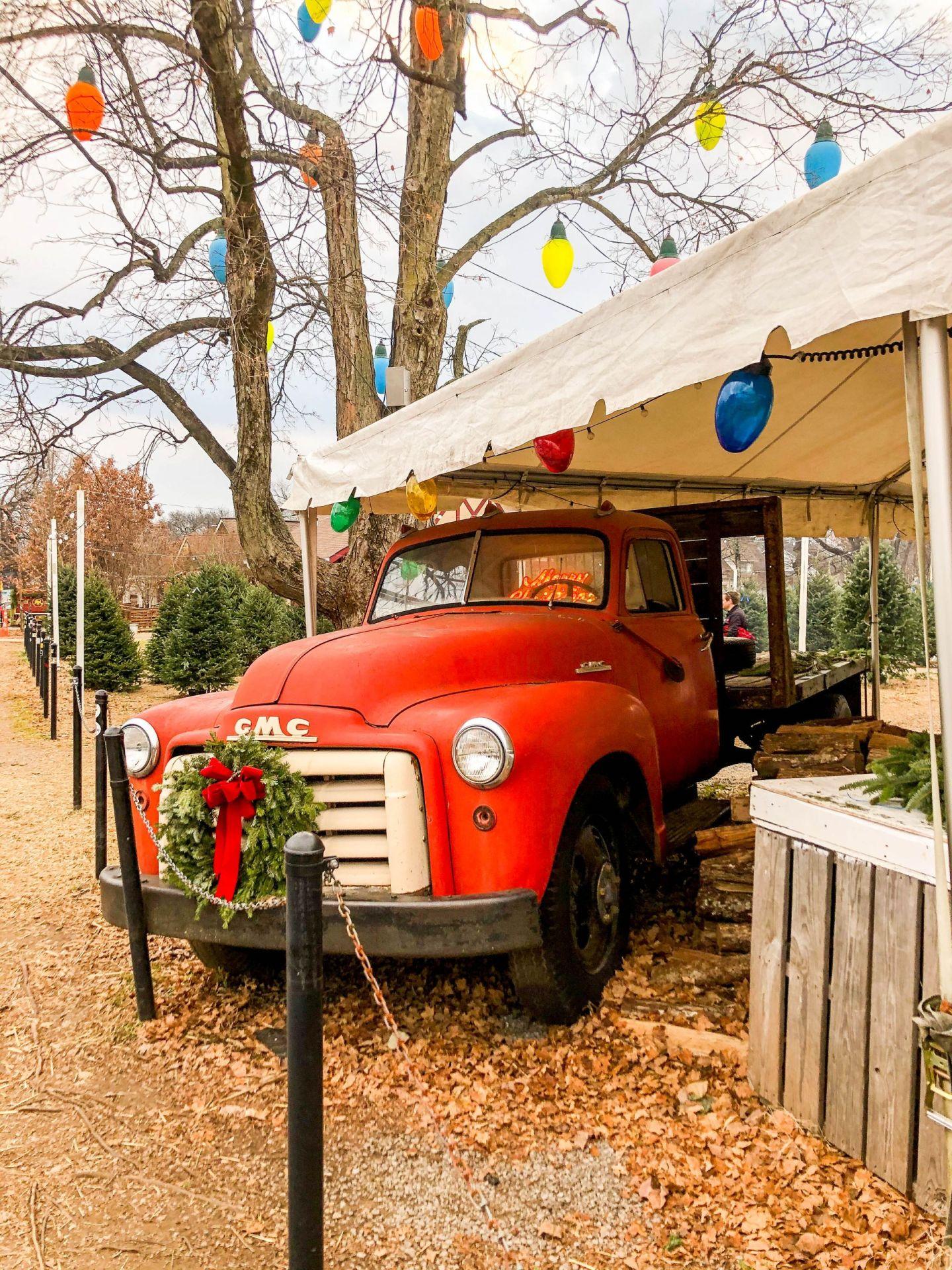 christmas trees nashville - december in nashville - 12south nashville