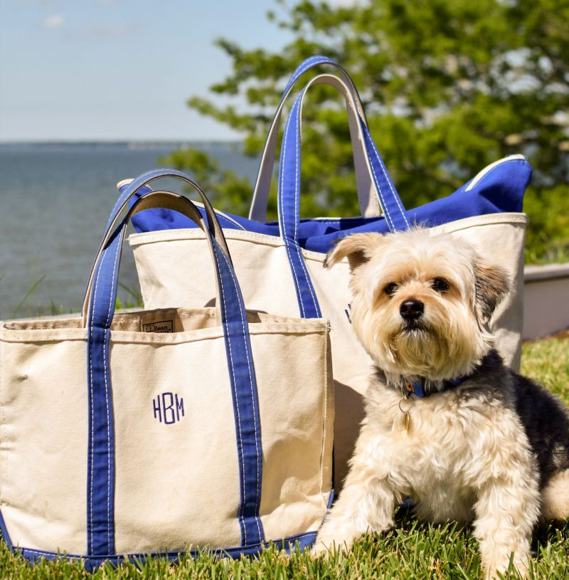 Budget-Friendly, Classic Luggage: L.L. Bean Boat and Tote Review