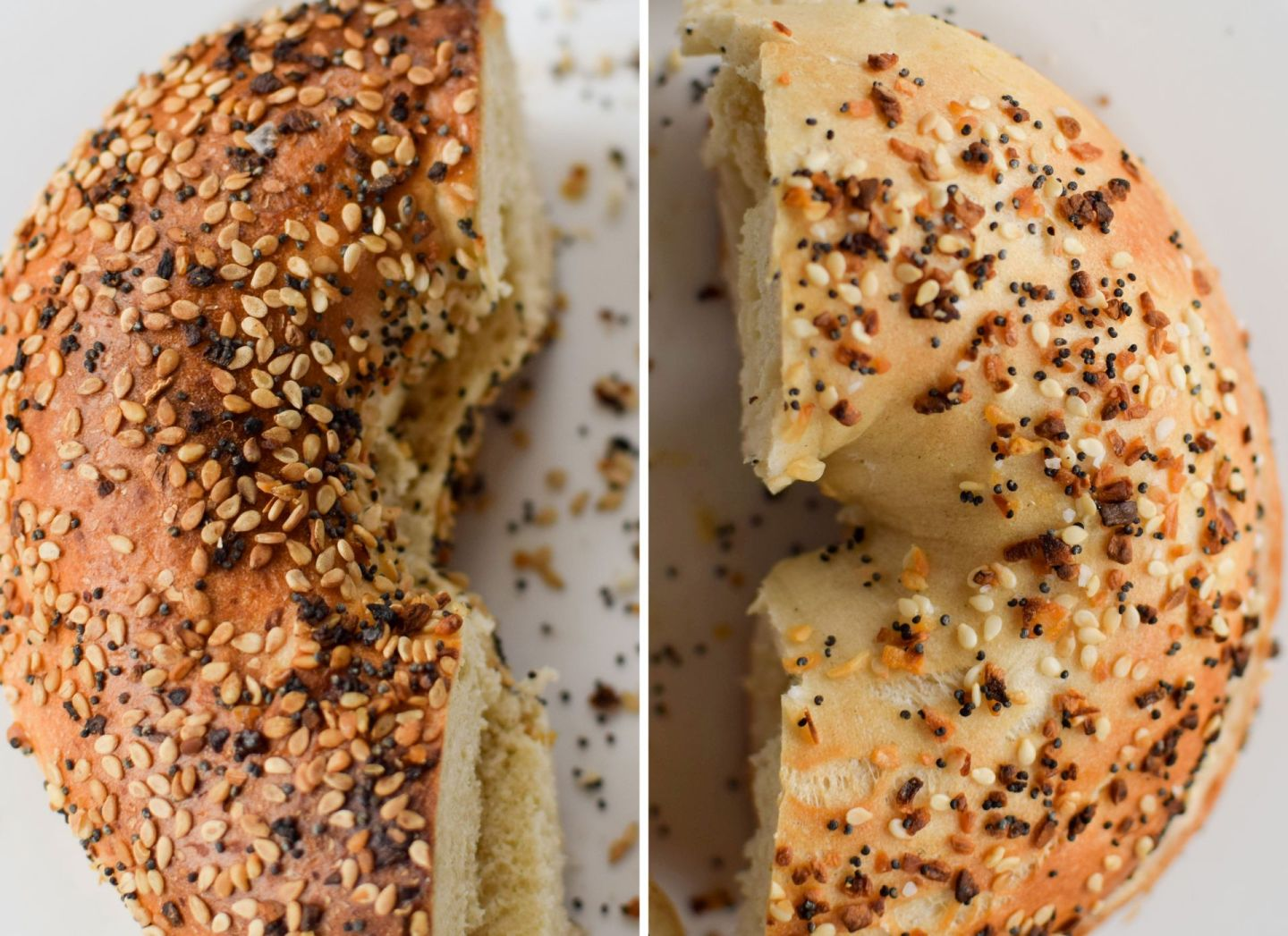 best bagel in DC - call your mother - buffalo and bergen - bullfrog bagels - bethesda bagels - bagels on capitol hill - bagels in DC - where to get bagels in DC