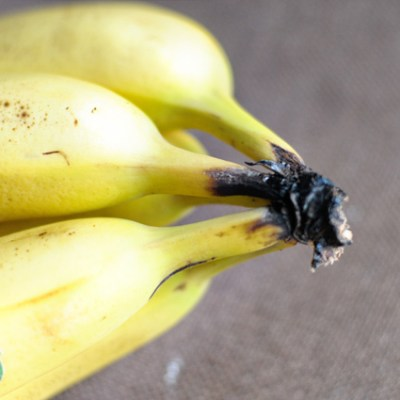 Peanut Butter Banana-Baked Granola