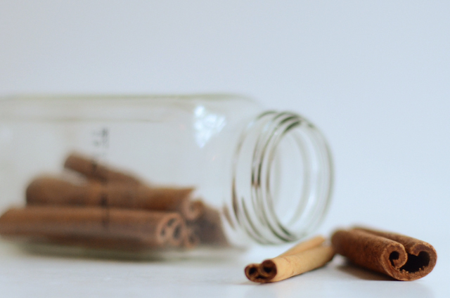 Cinnamon Brown Sugar Gelato || HeatherDish.com