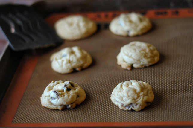 Small-Batch Browned Butter Chocolate Chip Cookies || HeathersDish.com