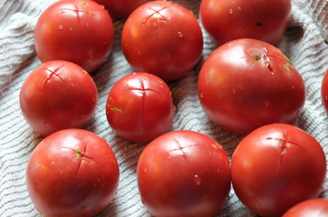 How to Make Tomato Sauce from Fresh Tomatoes    HeathersDish.com