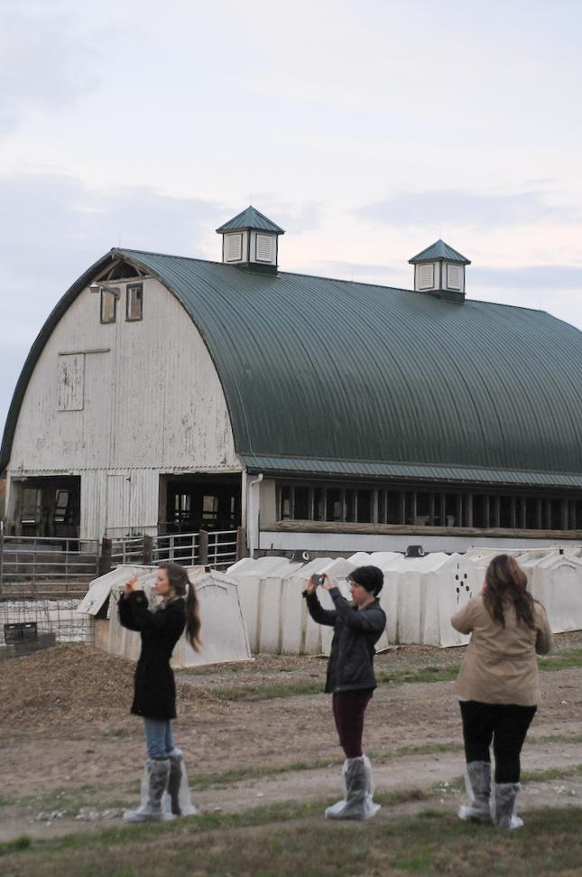Ohio Dairy Adventure 2014 || www.heathersdish.com #OHDairyAdventure