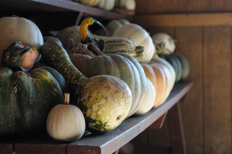 Crockpot Pumpkin Butter and Apple Butter on #onlyinark from @heathersdish