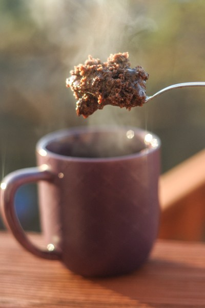 Protein-Packed Chocolate Fudge Mug Cake is bar none the best chocolate mug cake you'll ever have, not to mention it's packed with 20 grams of protein to boot! Makes for the best breakfast and/or dessert on the planet! from @heathersdish