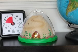 Homeschool Ant Farm