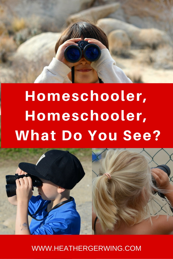 Homeschooler, Homeschooler, What Do You See?