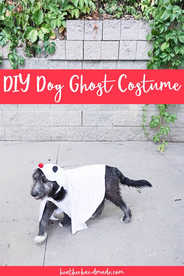 Ghost Costume for Your Dog - DIY Sewing Tutorial