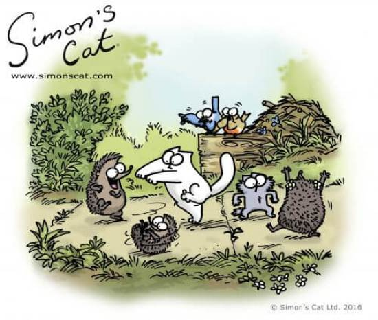 Simon's Cat and Kitten dancing with three hedgehogs while two birds cat call.