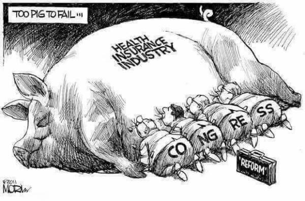 Cartoon: Congress sucking pig of health insurance industry