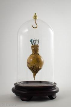 Electrophoria apiana