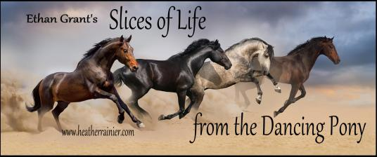 Ethan Grant's Slice of Life from the Dancing Pony