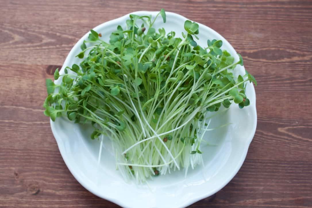 cut microgreens