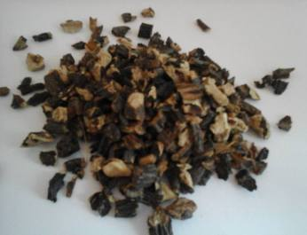 comfrey-root-dec-16