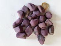 Purpurite 4