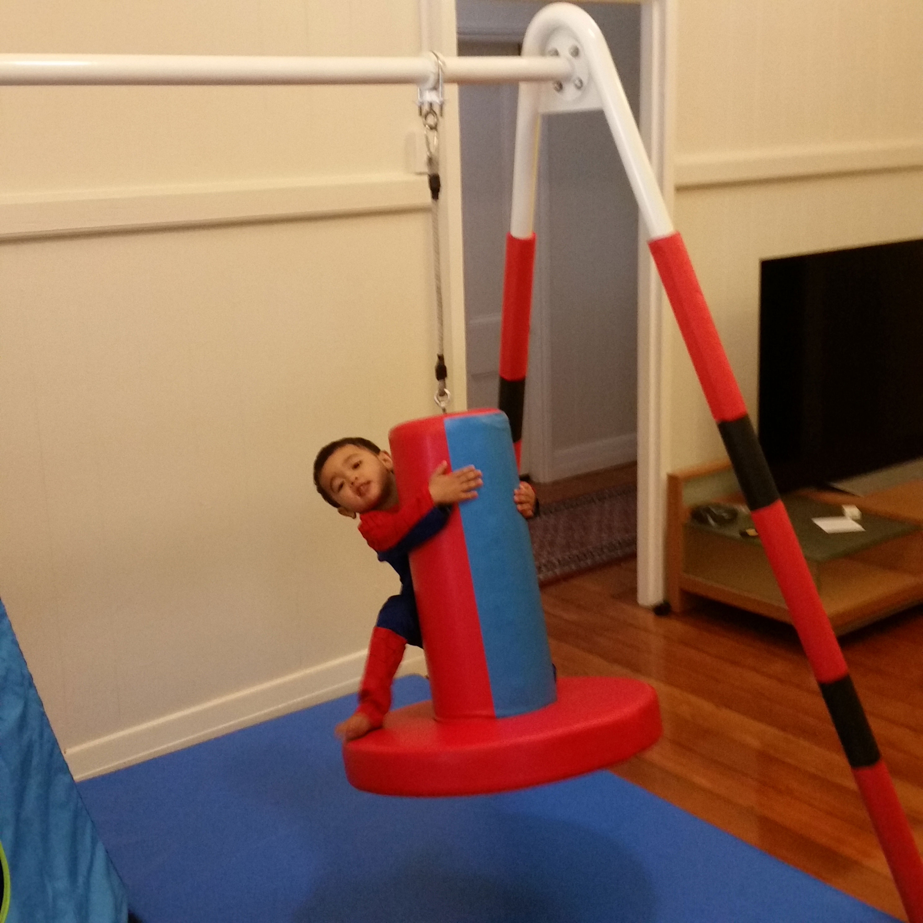 Padded Sensory Swing Stand With Bolster Swing And Flexion