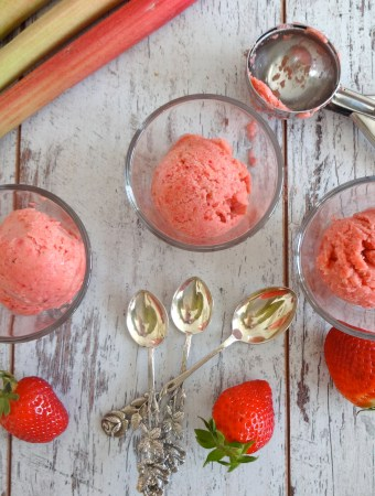 Rhubarb Strawberry Banana Ice Cream