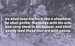 bibe verses Isaiah 40:11