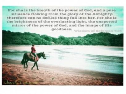 wisdom of solomon 7:25