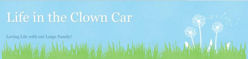 Life in the Clown Car Blog