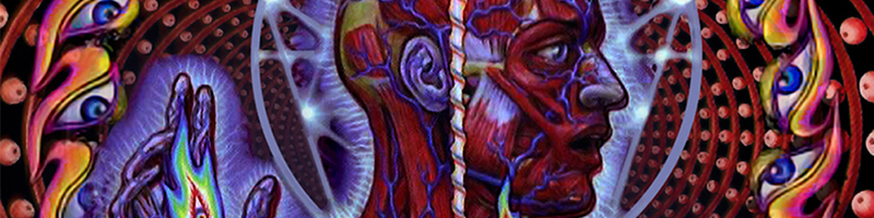 Tool-Lateralus-Banner