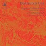 Destruction Unit - Negative Feedback Resister